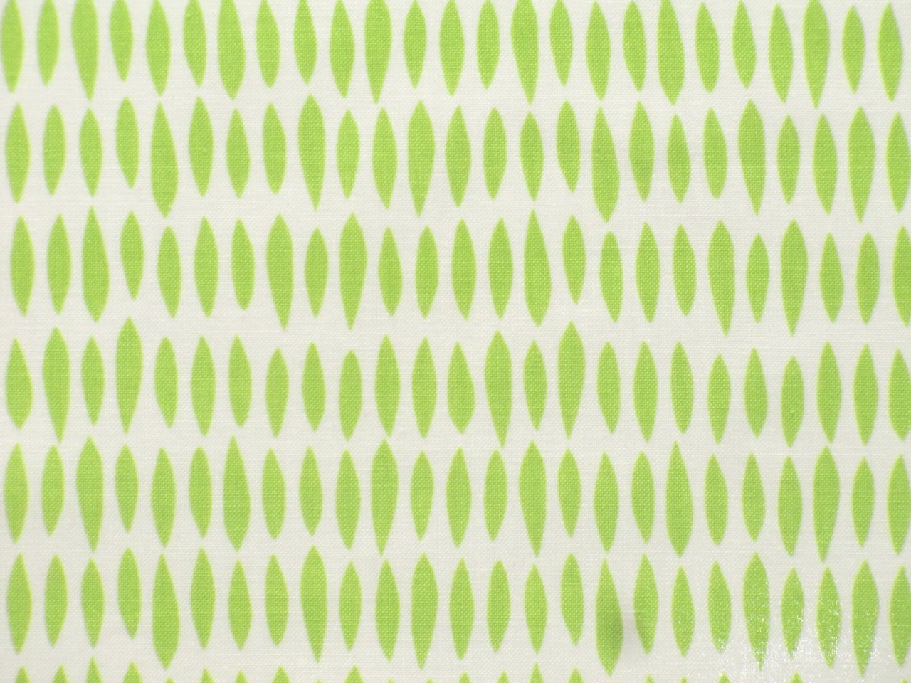 Cotton Fabric Riley Blake Sunshine green